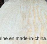 Irradiar el grado de la madera contrachapada D/E del pino