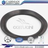 Guarniciones Cm6423 del elemento del filtro de aire