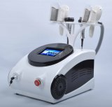 L'échographie Cryolipolysis Machine portable Cavitation RF body minceur