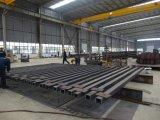 Гальванизированные стальные структуры строя строительную фирму