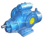 Huanggong 바다 사용을%s 쌍둥이 나선식 펌프 2hm7000-150