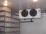 Kühlraum für Obst und Gemüse