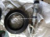 Выскальзование силы насоса винта насоса PC оборудования нефтянного месторождения/Dia выскальзования кручения. 32