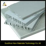 새로운 디자인 환경 PVDF/Power 코팅 알루미늄 벌집 위원회