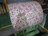 Цвет покрыл катушку покрытия печати стальную для украшения и здания