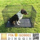 Doppi portelli per i prodotti del cane