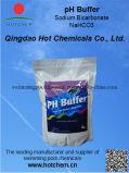 Natación Pool Chemicals de Alkalinity Plus (HCAL001)