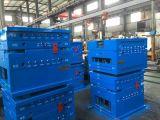 Qualitäts-Plastikeinspritzung-Ladeplatten-Form-Fabrik