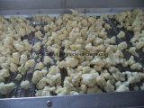 Neue Größe des Getreide-beste Qualität gefrorene Blumenkohl-3cm-5cm (BRC, FDA, ISO, REINES, HALAL)