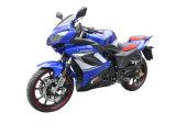 Motocicleta (GW200-12C)