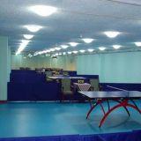Ittfの標準2017の熱い販売の卓球PVCフロアーリング