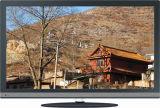 18.5 pouces DEL TV (19L17A)
