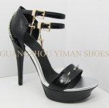 2013 NOUVELLES chaussures sexy de mode de dames (YMS002190-01)