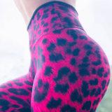 Muita demanda de mercado Rose Red Leopard aerada de impressão executando as calças calças de ioga Slim