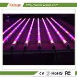 LED Profissional Keisue crescer luminária para crescer Vegtable/Flower