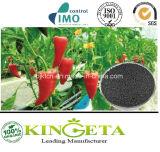 Biocharの有機化合物の微生物肥料