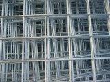 De uitstekende kwaliteit galvaniseerde het Gelaste Netwerk van de Draad in Lage Prijs