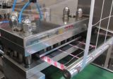 Máquina de embalaje automática de ampolla