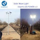 Lampe solaire de jardin de Bluesmart 6W 9W 12W pour les lumières solaires de stationnement de jardin de route