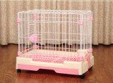 Tipo gabbia del cassetto dell'animale domestico della gabbia del cane piccola con le macchine per colata continua