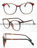 Frame ótico de aço plástico personalizado venda por atacado/Eyewear/vidros de leitura