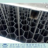 Ánodo de fibra de carbono tubo Tubo /
