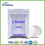 Produit organique Nutraceuticals de soins de santé de régime de Reuteri Probiotics de lactobacille