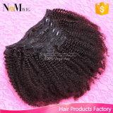 Grampo de cabelo virgem brasileiro em extensões de cabelo humano (QB-CLI-CC)