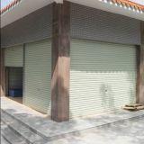 Deur van de Garage van het Broodje van Topbright de Universele Amerikaanse omhoog Elektrische