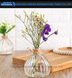 Glaswerk van de Vaas van het Glas van de Vorm van de pompoen het Duidelijke voor Decoratie