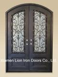 Дверь стекла ковки чугуна входа горячей обеспеченностью сбываний изготовленный на заказ двойная