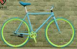 2016년 중국 조정 기어 자전거 자전거 공장 제조자