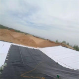 1.0mm Surface&#160 di massima; HDPE  Color&#160 nero; Geomembrane  per il pendio