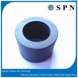 Anelli di ceramica sinterizzati magnete permanente del motore del ferrito