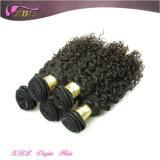 もつれの自由で自然な人間の毛髪のねじれた巻き毛のブラジルのバージンの毛