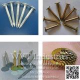 """Macchina automatica del chiodo del ferro per la lunghezza del chiodo: 2-4 """" diametro di /Nail: 2.8-4.5mm"""