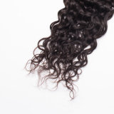 Trama francesa peruana humana de seda do cabelo Curly da extensão bonita nova do cabelo humano da chegada