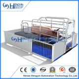 Schweinezüchterei-Geräten-Sau-werfender Rahmen