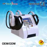 Cavitation portative de la conformité Cavitation+RF+Vacuum de la CE amincissant la machine