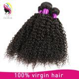 처리되지 않는 Virgin 머리 비꼬인 꼬부라진 사람의 모발 싼 브라질 머리