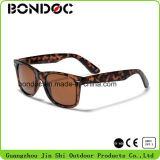 Occhiali da sole di vendita caldi della plastica del blocco per grafici degli occhiali da sole delle donne