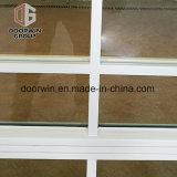 Heißes neue Produkt-preiswertes Windows-schönes Fenster-Gitter-Entwurfs-Badezimmer
