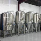 équipement de brassage de bière 200L utilisé Nano avec SGS