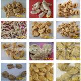 Macchine della proteina della soia