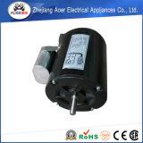 Motore elettrico industriale di monofase 115V di CA di rotazione d'inversione