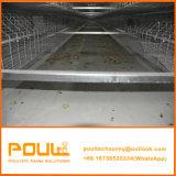Jaula DE Pollo Chicks Batterijkooien in het Project dat van het Landbouwbedrijf van de Kip worden gebruikt