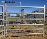 I rifornimenti del bestiame hanno galvanizzato i comitati del bestiame usati l'acciaio