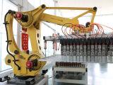 O Robô industrial e do lado do Robô