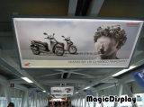 Blocco per grafici a schiocco di abitudine che fa pubblicità alla casella chiara