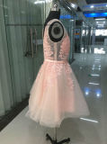Rosa Lovemay Nice Lace Tulle Cordão partido curto vestido de Noite
